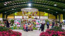 نمایشگاه بین المللی البرز
