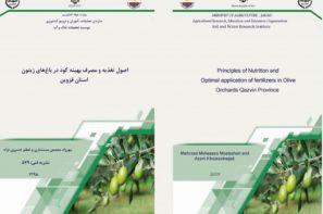 نشریه فنی اصول تغذیه و مصرف بهینه کود در باغ های زیتون استان قزوین