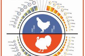 پوستر ترویجی: مقایسه ارزش غذایی گوشت مرغ و بوقلمون