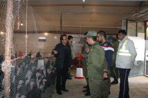 پروژه مهارت آموزی کارکنان وظیفه نیروهای مسلح