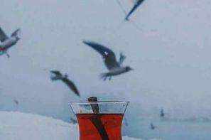 چای کوهنورد محصول فرزین چای و نمایش آن در غرفه مجازی صنایع غذایی