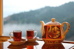 چای ایرانی محصول مورد علاقه ی مشتریان در غرفه شرکت فرزین چای