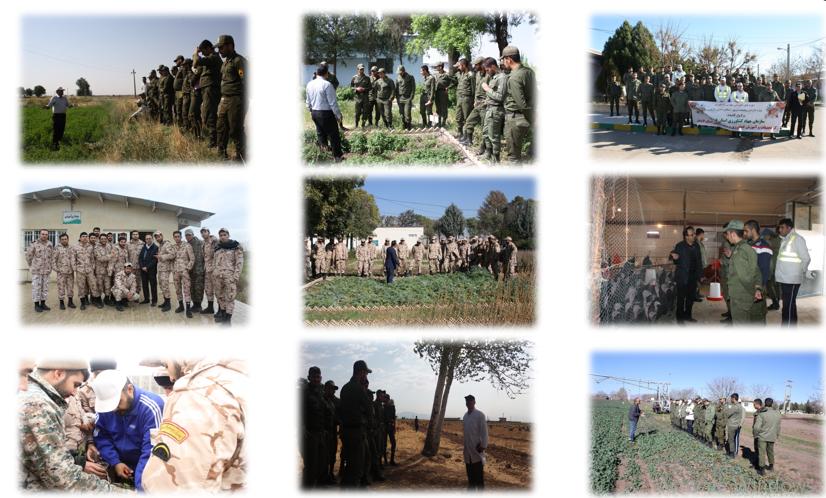 سربازان مرکز تحقیقات و آموزش کشاورزی و منابع طبیعی استان قزوین