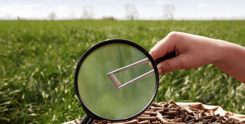 تحقیق و توسعه زانیار شرکت زانیار